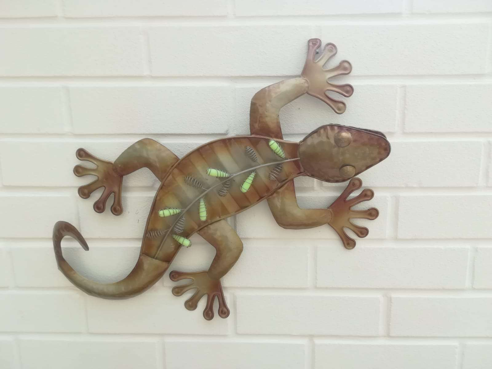 Iguana-Deborh-Thompson