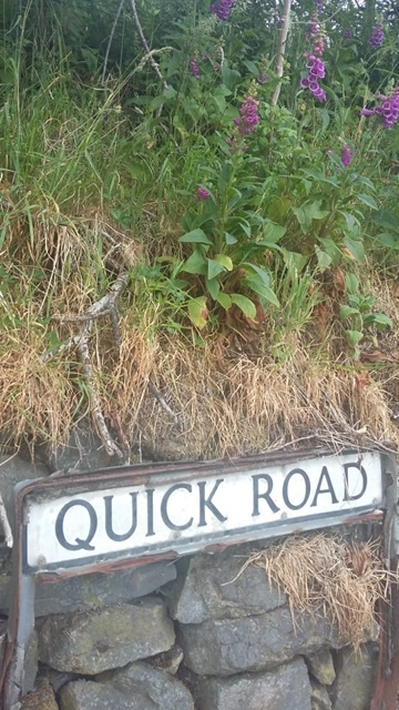 Quick-Road-Sue-Fleming