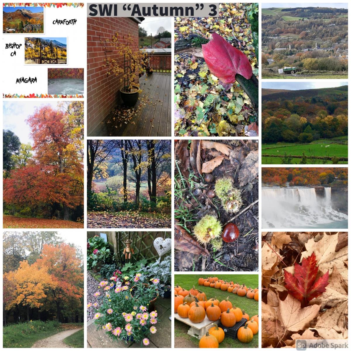 SWI-Autumn-part3
