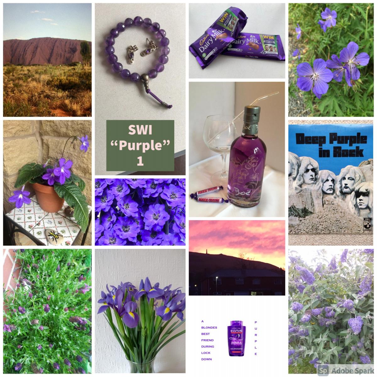 SWI-Purple-1