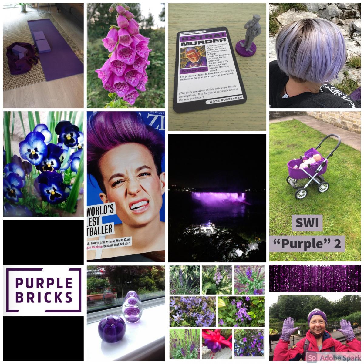 SWI-Purple-2