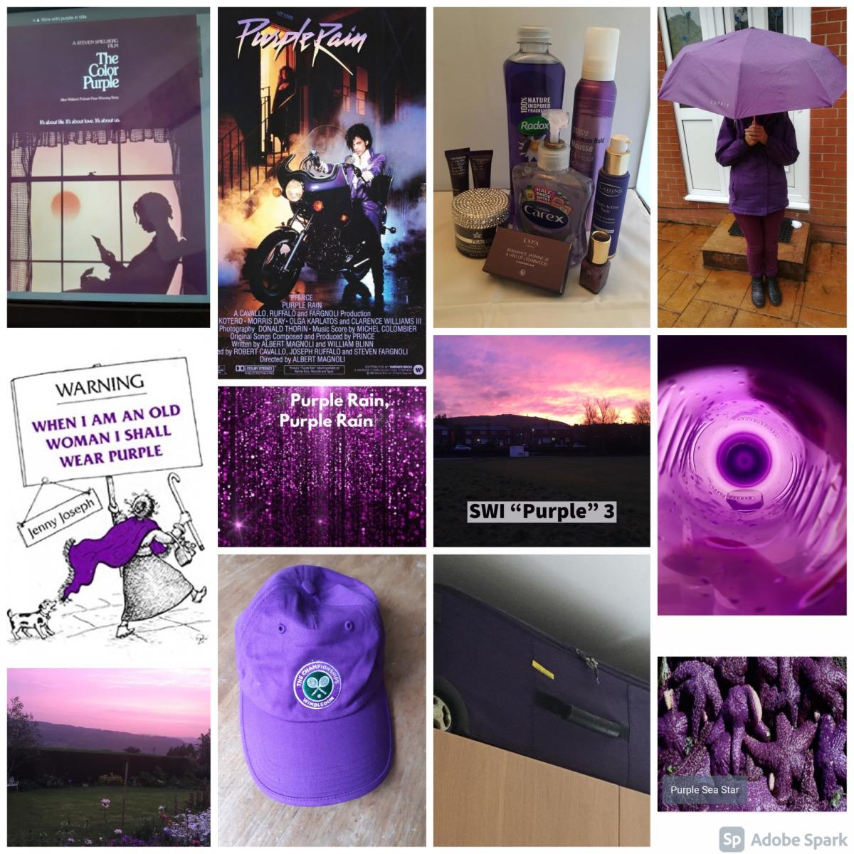 SWI-Purple-3