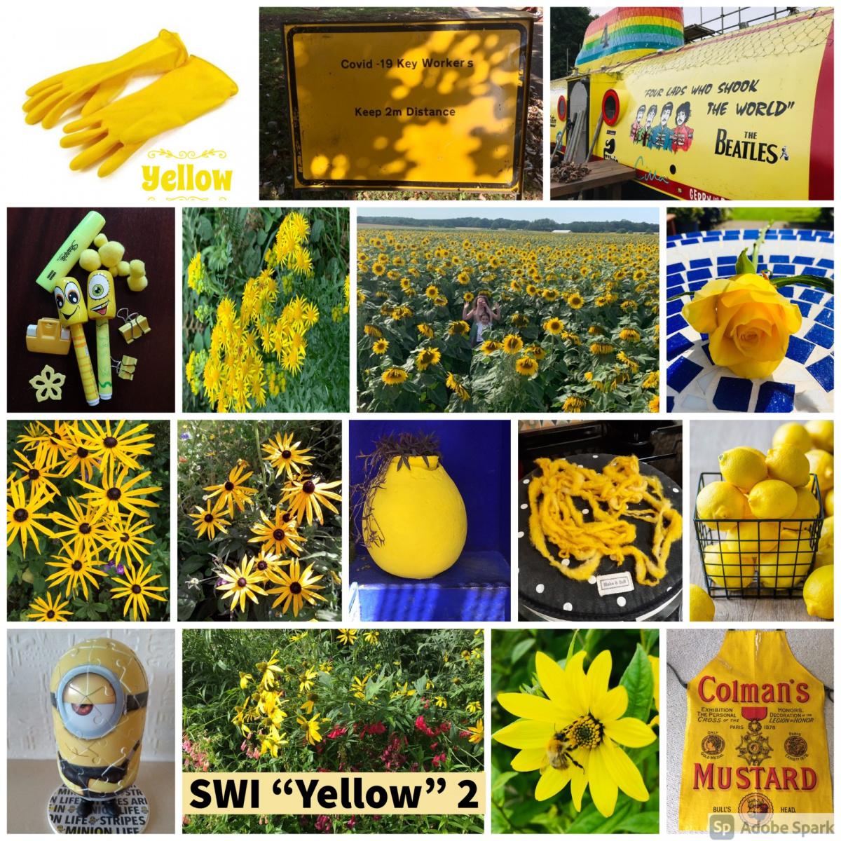 SWI-Yellow-part2