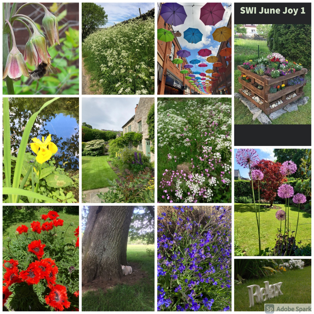 SWI-June-Joy-part1