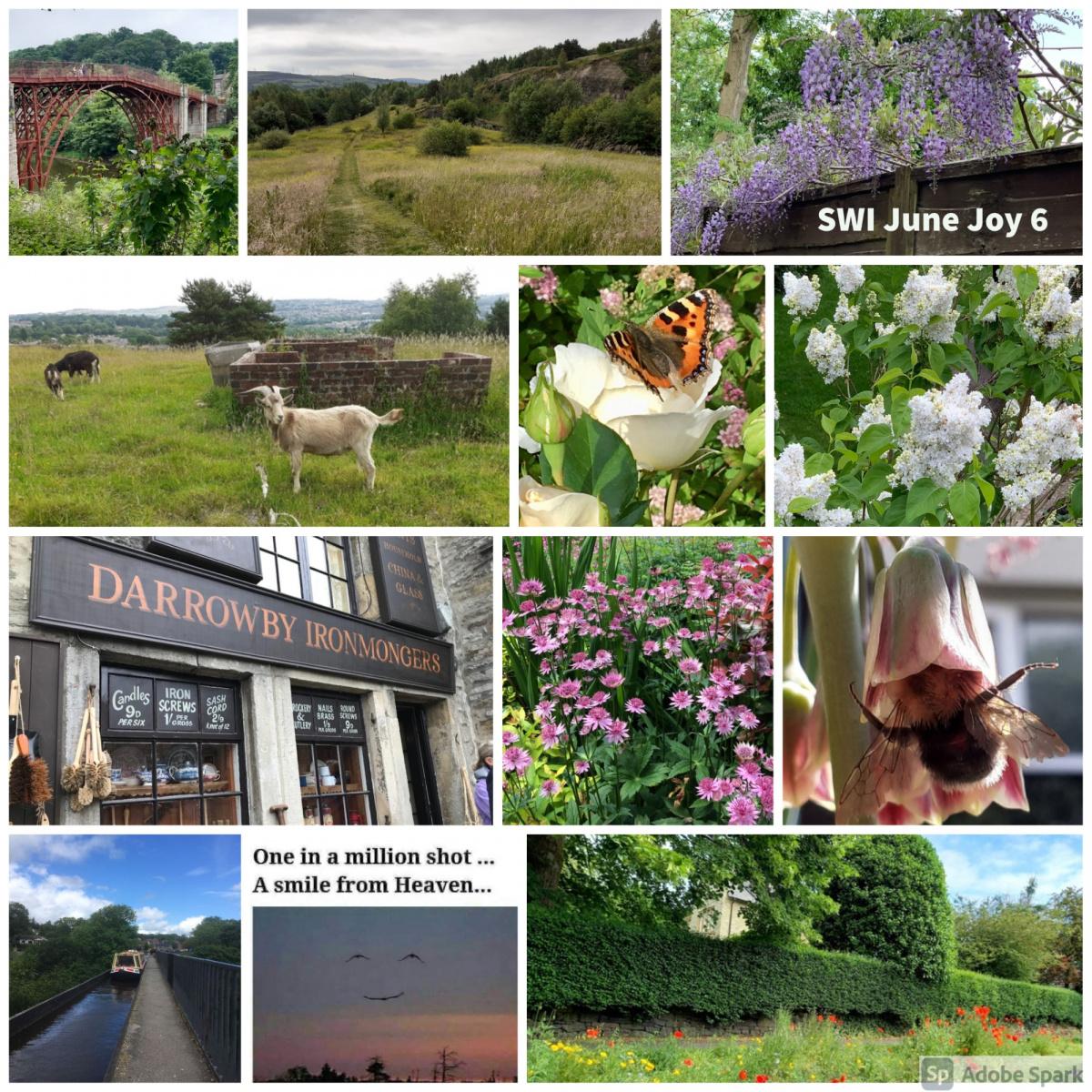 SWI-June-Joy-part6