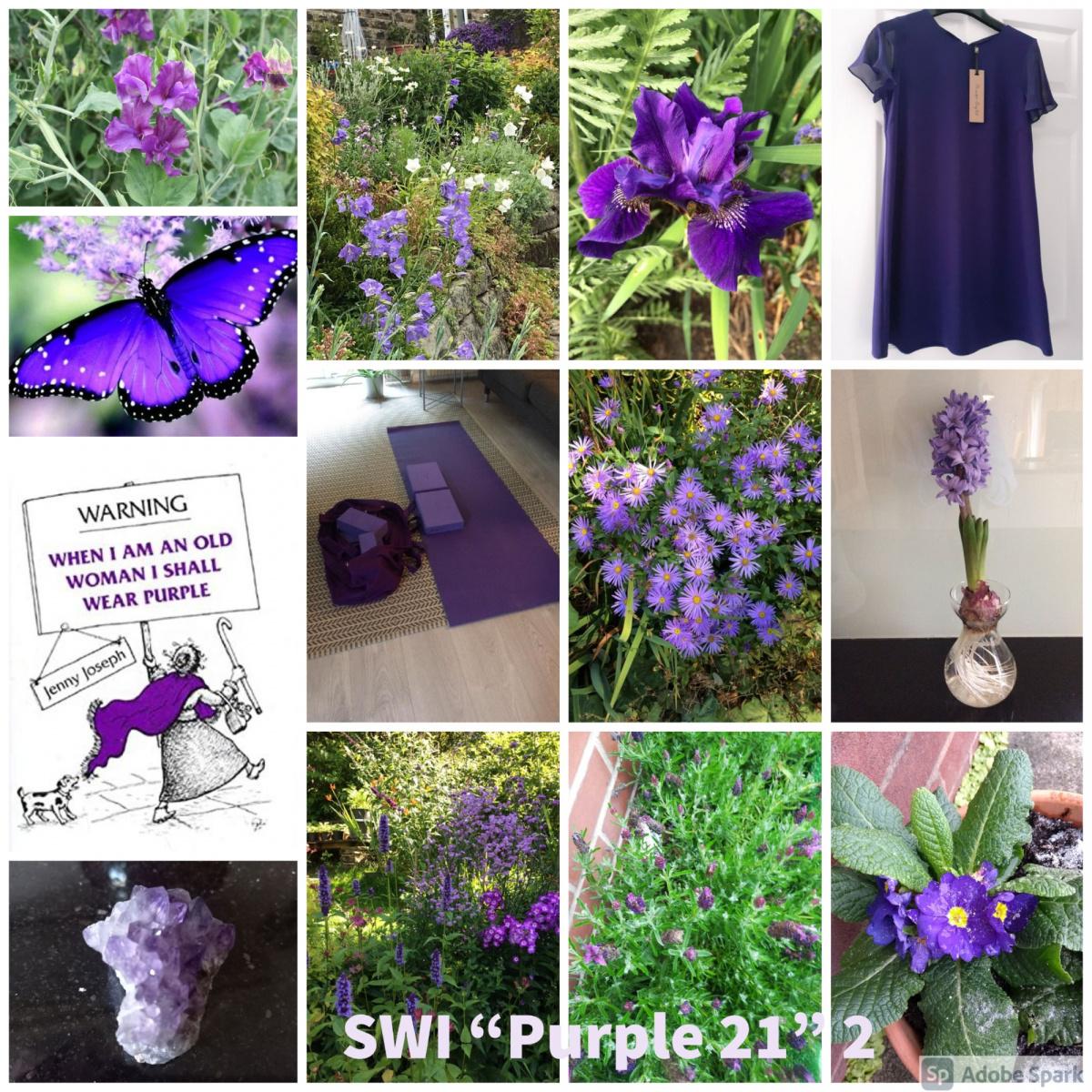 SWI-Purple-21-part2