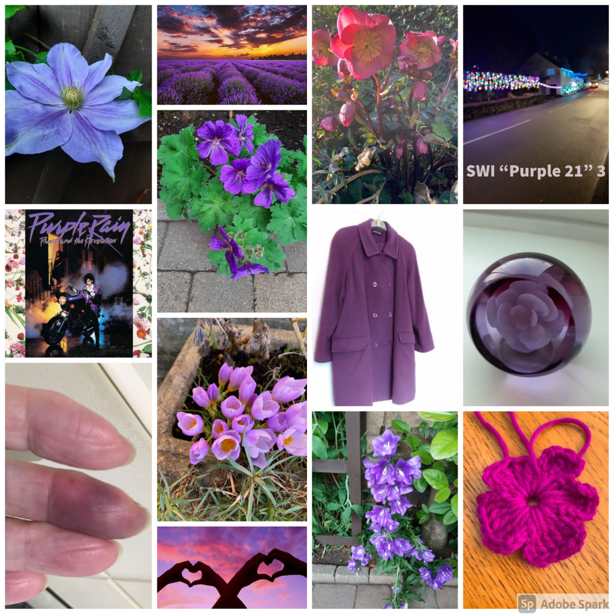 SWI-Purple-21-part3